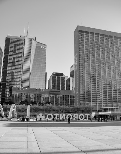 an empty nathan phillips square from the view of old city hall
