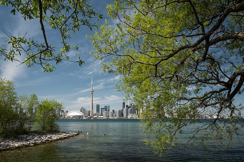 a view of the cn tower across a body of water